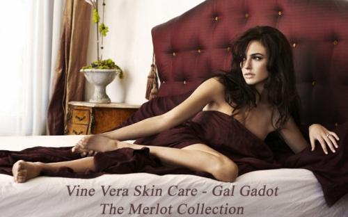 Gal Gadot & Vine Vera Skin Care
