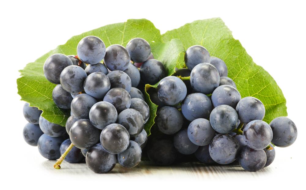 аналогу такой в листьях винограда есть ресвератрол врачи-косметологи