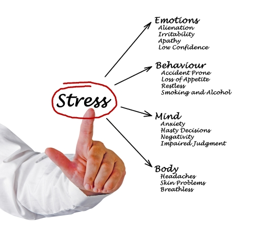 Your doctor can help you deal with Cortisol's disruptive behavior