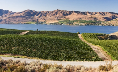 Lake Chelan Winery on the banks of the lake