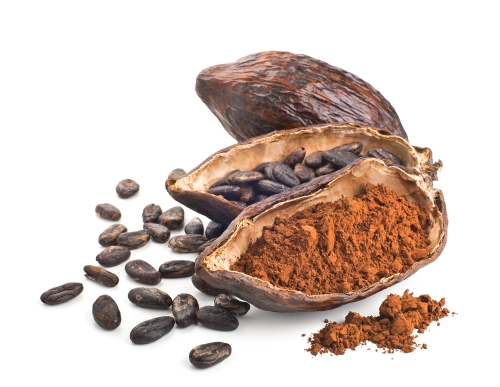 Cacao pod, beans and powder