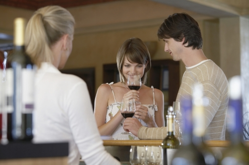 A couple participating in a wine tasting
